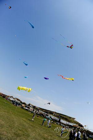 SFFG-kites11-1.jpg