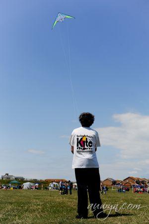 SFFG-kites11-2.jpg
