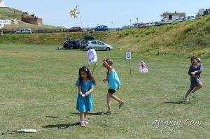 SFFG-kites11-28.jpg