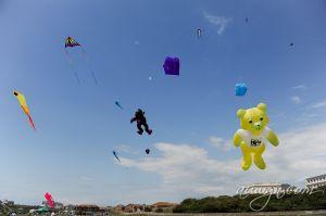 SFFG-kites11-3.jpg