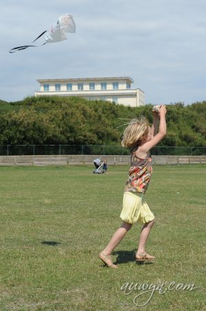 SFFG-kites11-31.jpg