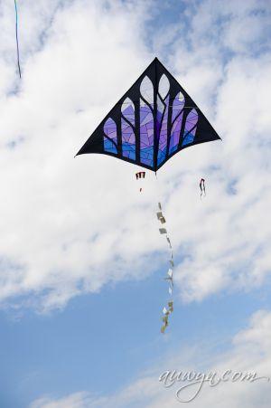 SFFG-kites11-40.jpg