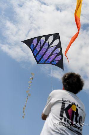 SFFG-kites11-41.jpg