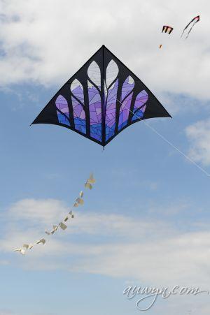 SFFG-kites11-42.jpg
