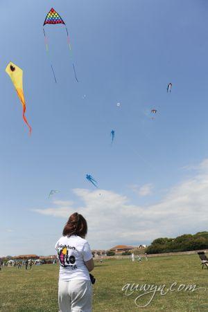SFFG-kites11-5.jpg